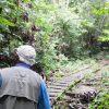 Gunung gading rafflesia safari_1