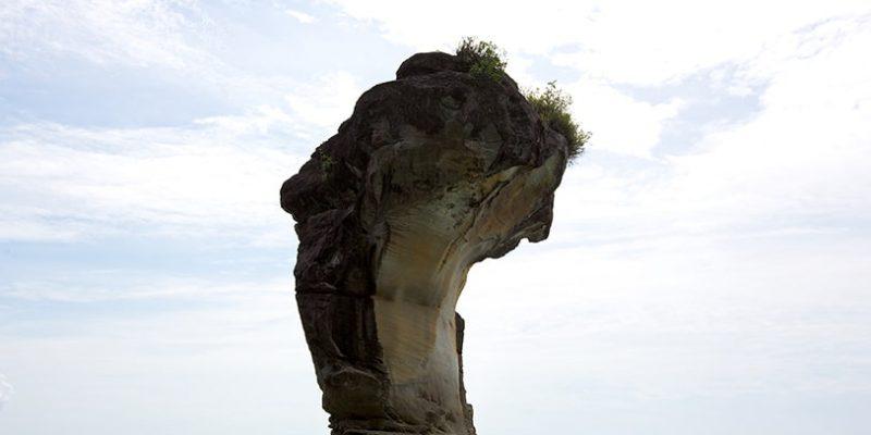 bako national park_11