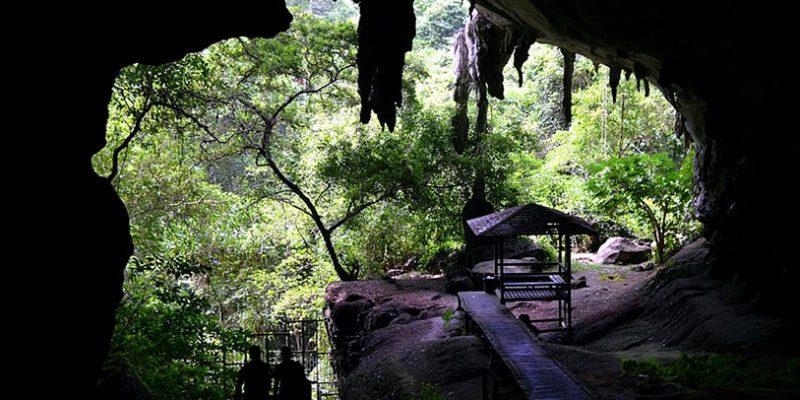 niah cave mulu cave_2