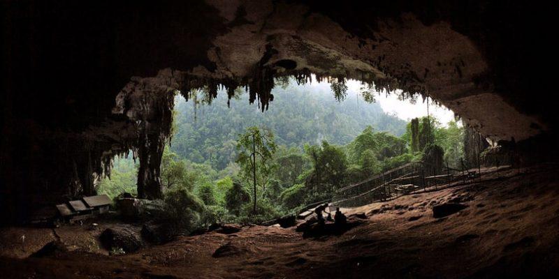 niah cave mulu cave tour